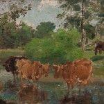 Sujet: Vaches