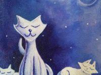 Les chats 1